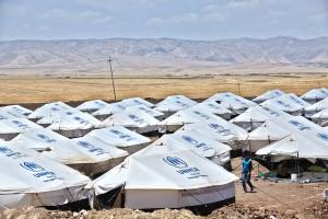 CHEP UNHCR June 2014