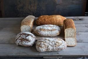 Kara Bread-Group2