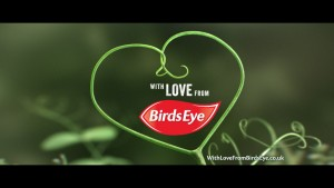 from-birds-eye-with-love