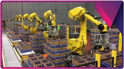 Six FANUC M-710iC/50H robots